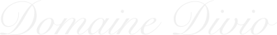 Domain Divio